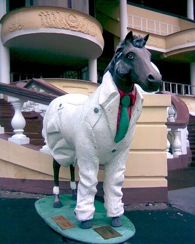 Конь в пальто на московском ипподроме