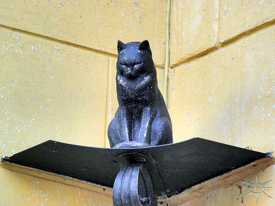 Памятник кот елисей в санкт-петербурге.